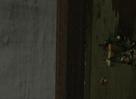 L'apparition du hunter a cela de choquant qu'il brise une règle tacite de Resident Evil en passant les portes.